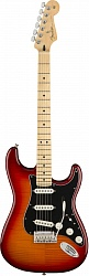 FENDER PLAYER STRAT PLS TOP MN ACB